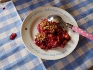 gezonde crumble met frambozen en appel